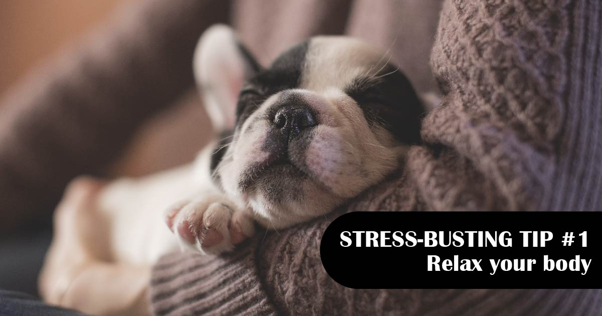 A black-and-white puppy sleeps in a person's arms. Text reads: Stress-busting tip No. 1: Relax your body.