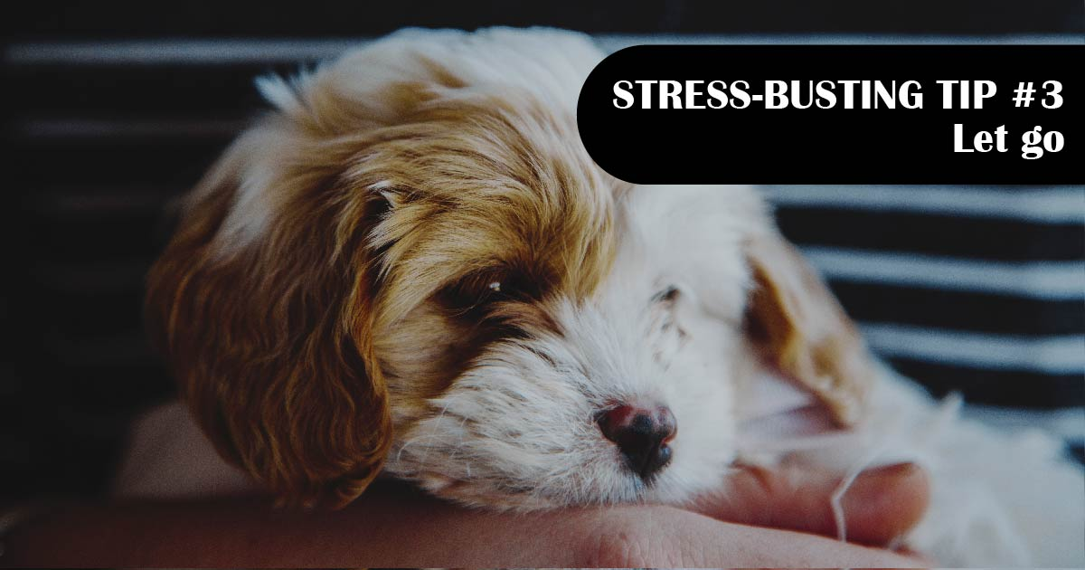 A puppy relaxes in someone's lap. Text reads: Stress-busting tip No. 3: Let go.